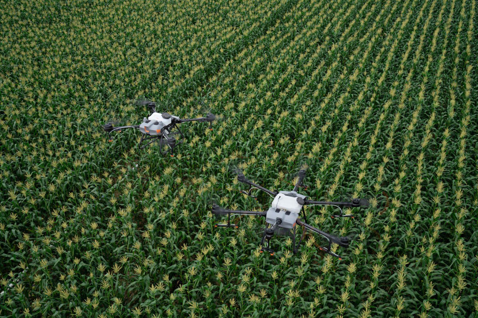 Dron do oprysku i siewu DJI Agras T30, T10