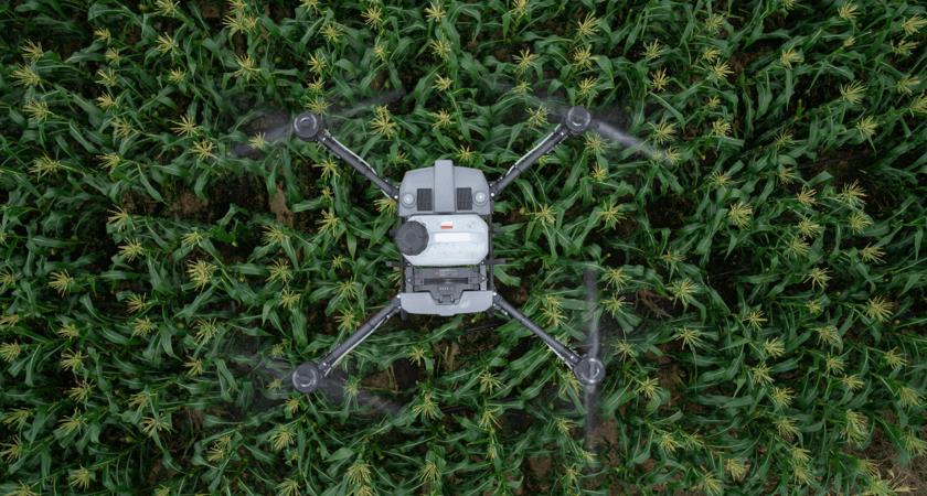 zdjęcie agrasa t10 od góry podczas oprysku pola kukurydzy